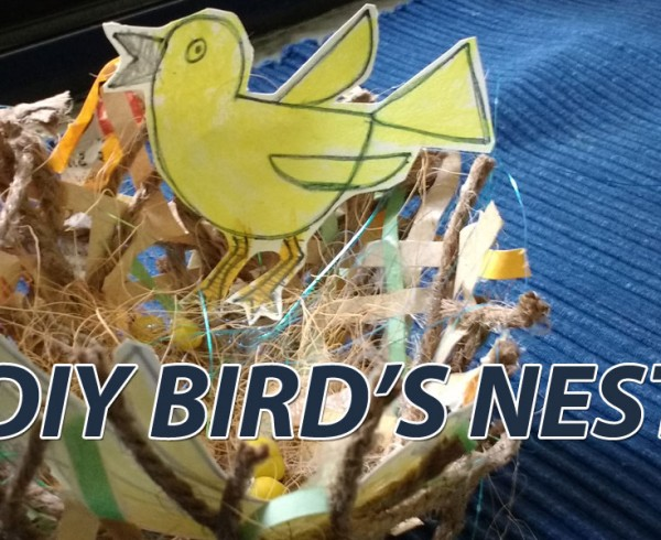 DIY-birds nest