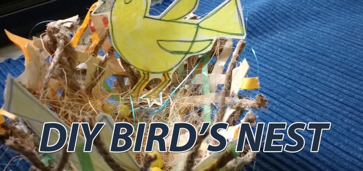 DIY-birds nest
